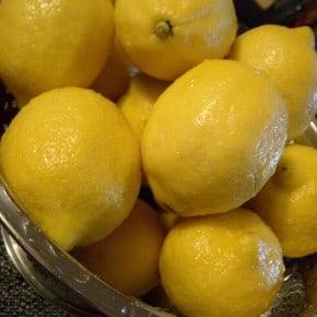 Homemade Limoncello by Nutmeg Nanny