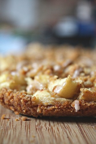 These cinnamon apple streusel bars are the perfect mashup of Dutch apple pie and a crunchy apple bar dessert. Simple to make and delicious to devour.