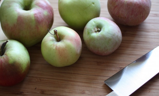 A review of a day spent Hudson Valley apple picking. After we got home I made homemade apple sauce that is fast and easy to make.