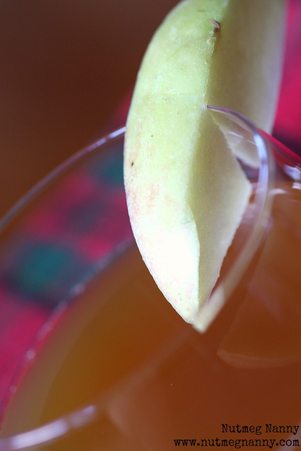 This ginger spiked apple cider is the perfect addition to your fall cocktail menu. It's the perfect use for fresh pressed apple cider and that hint of ginger liqueur and splash of dark rum round out this cocktail perfectly.