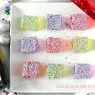 Champagne Jello Shots via Nutmeg Nanny