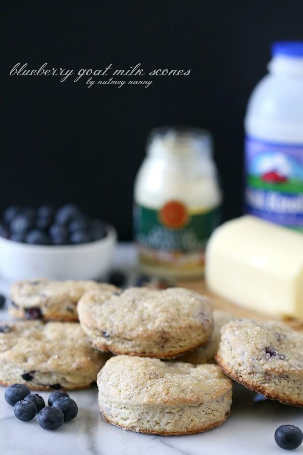Blueberry Goat Milk Scones Recipe by Nutmeg Nanny