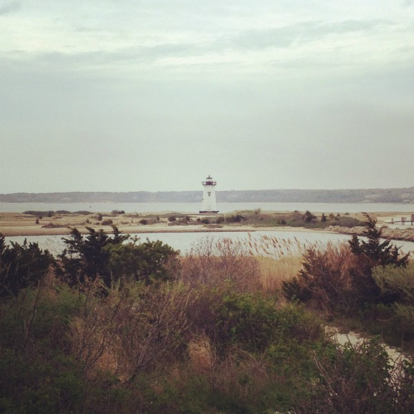 Martha's Vineyard Lighthouse by Nutmeg Nanny