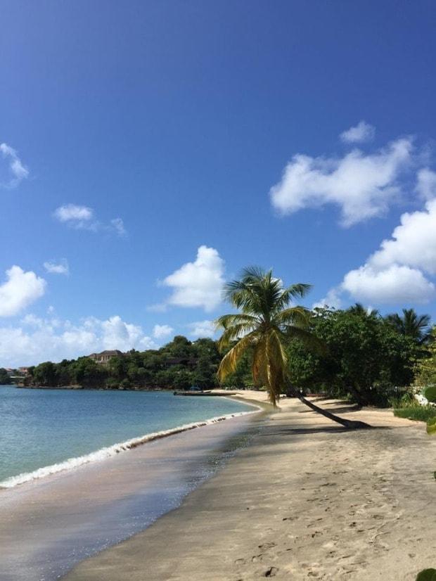 Lance aux Pines Beach - Grenada