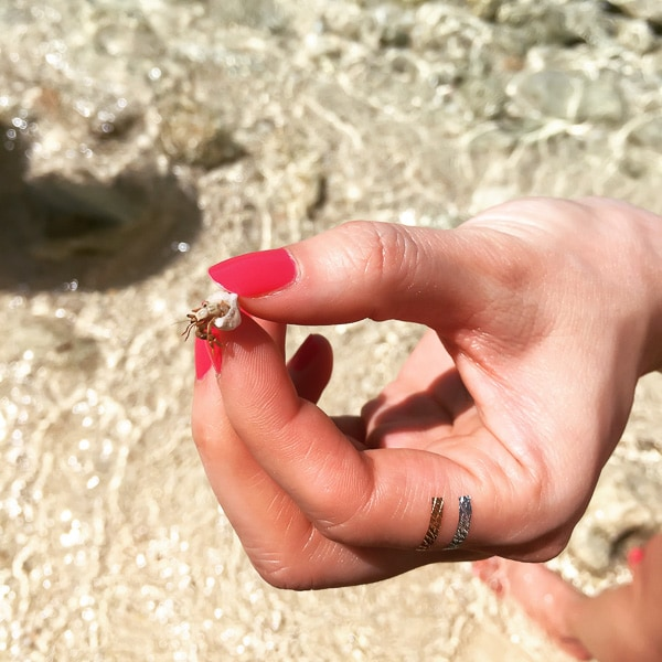 Regal Princess Cruise Princess Cays, Bahamas