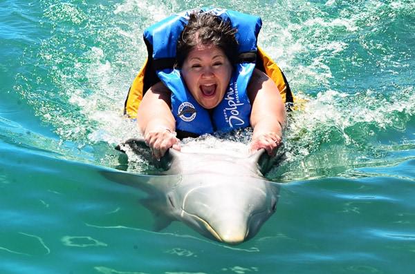Regal Princess Cruise - Dolphin Discovery Tortola