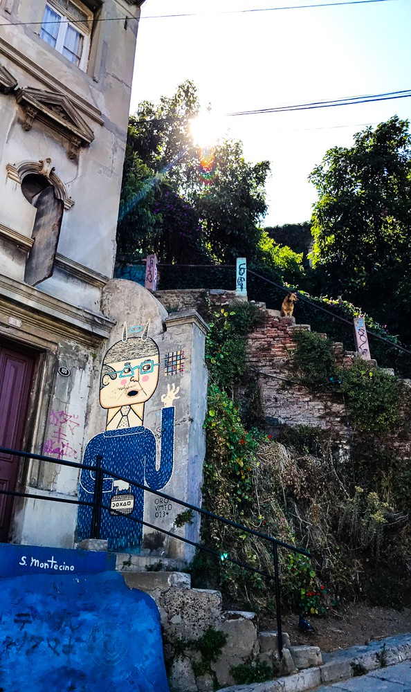 If you find yourself in Chile don't miss the opportunity to go on a Valparaiso Chile graffiti walking tour. The town is full of beautiful street art and graffiti and you will be rewarded with amazing views of the town as you walk up and down the many hills and old stairways of the town.