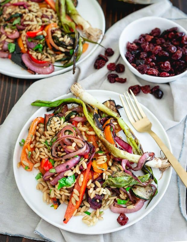 Tart Cherry Balsamic Grilled Vegetable Pasta Salad - 20 Perfect Summer Salads